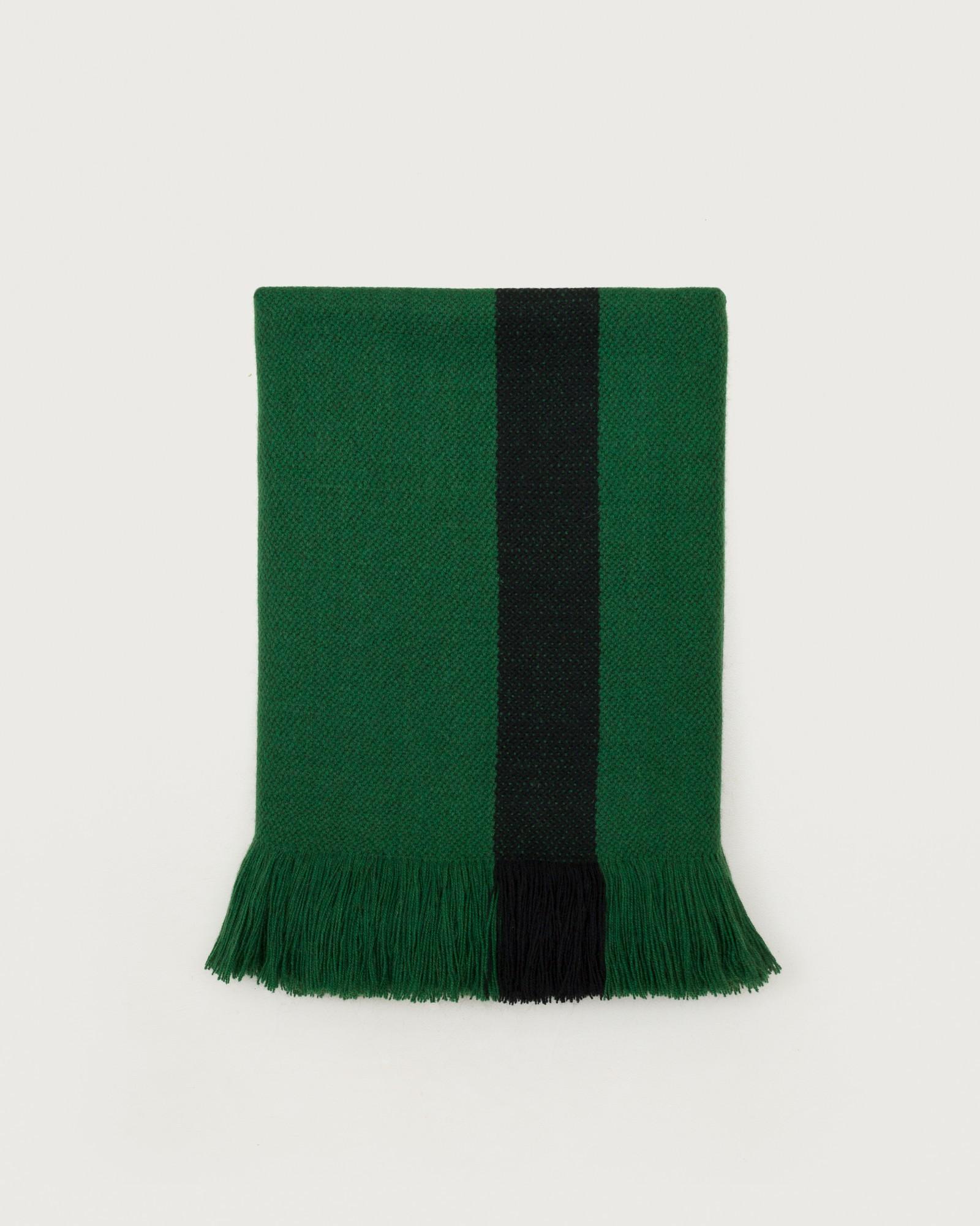 bicolor-green1.jpg