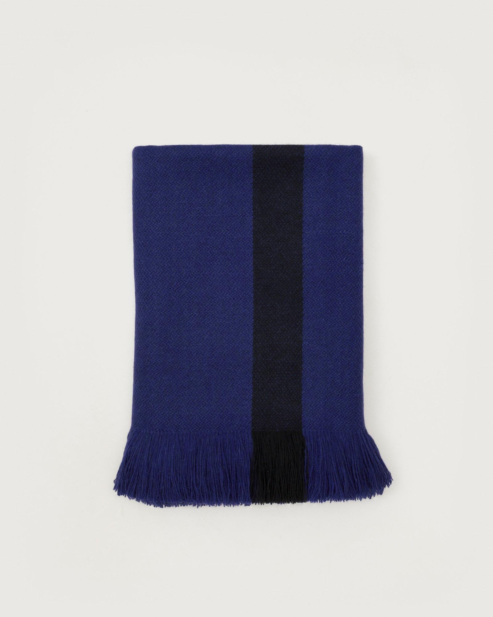 bicolor-blue-violet1.jpg