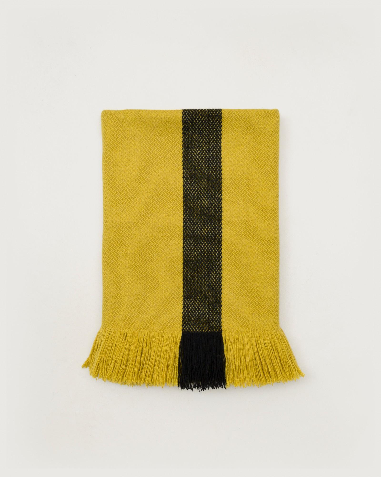 bicolor-yellow1.jpg